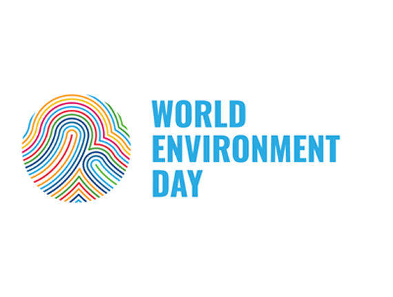 Celebrating World Environment Day: Top Tips for Environmental Management